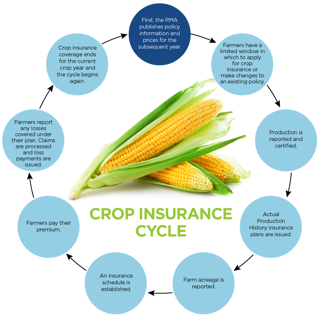 How crop insurance works graph image