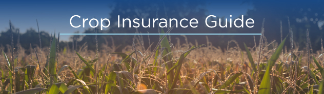 crop insurance guide image