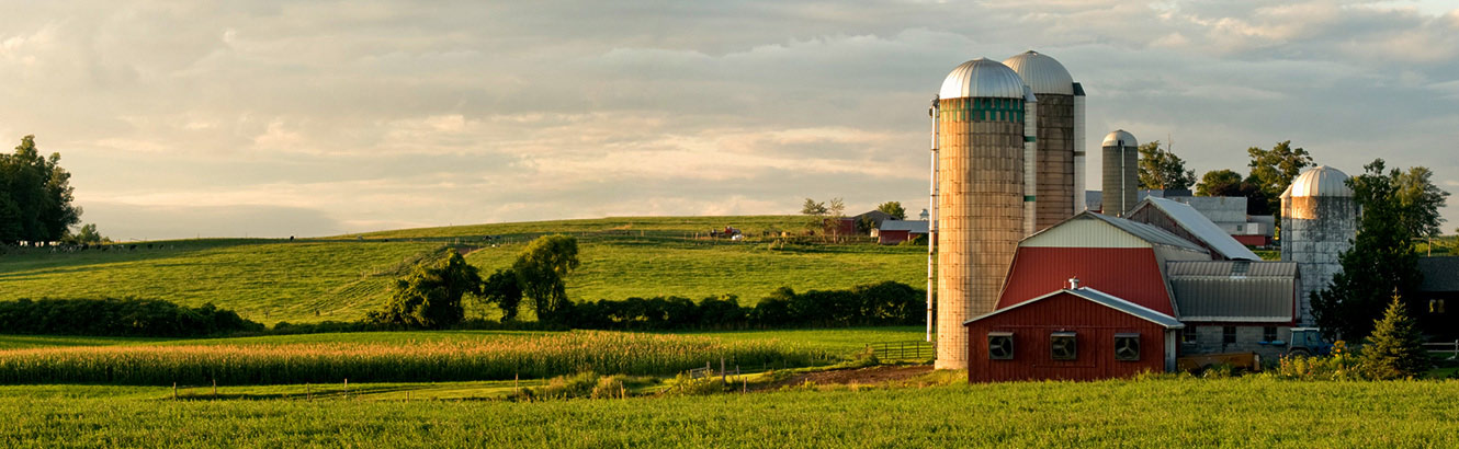 Farm scene with barn and silos.